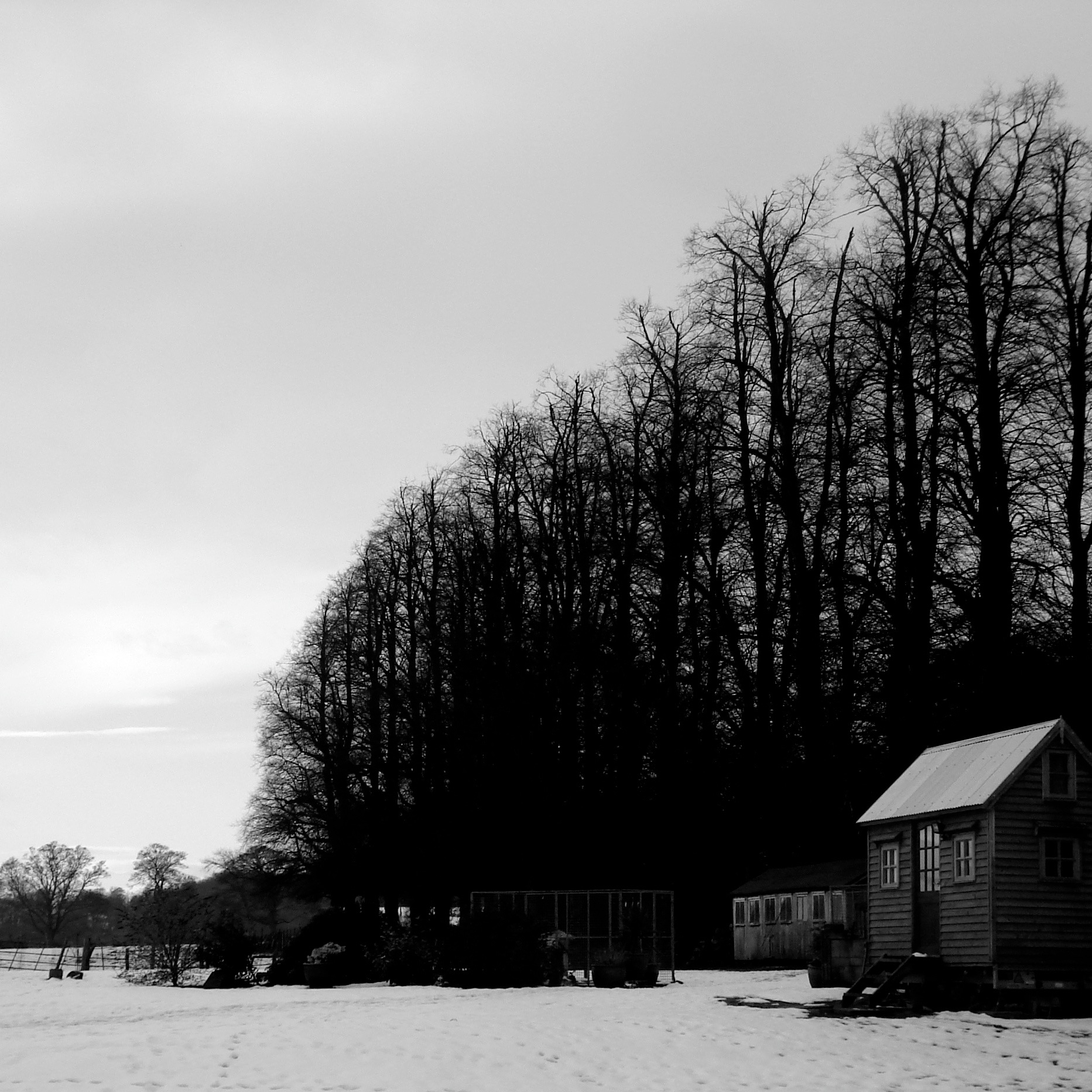 b/w Shed on wheels in snow
