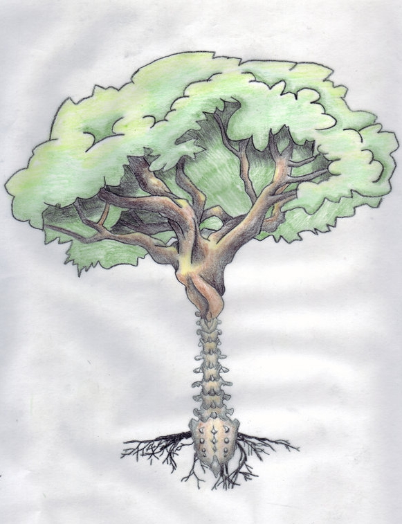 The Spine is the Tree of Life. Respect It. - — Lizl Kotz