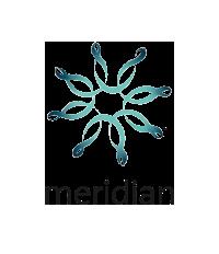 Meridian+desktop@2x+(1).png