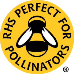 RHS_Bee_YELLOW-REGISTERED.png