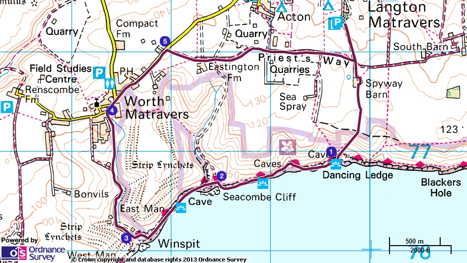 Starting in the Spyway Car Park in Langton Matravers - BH19 3HG. 12pm on the 31st December -