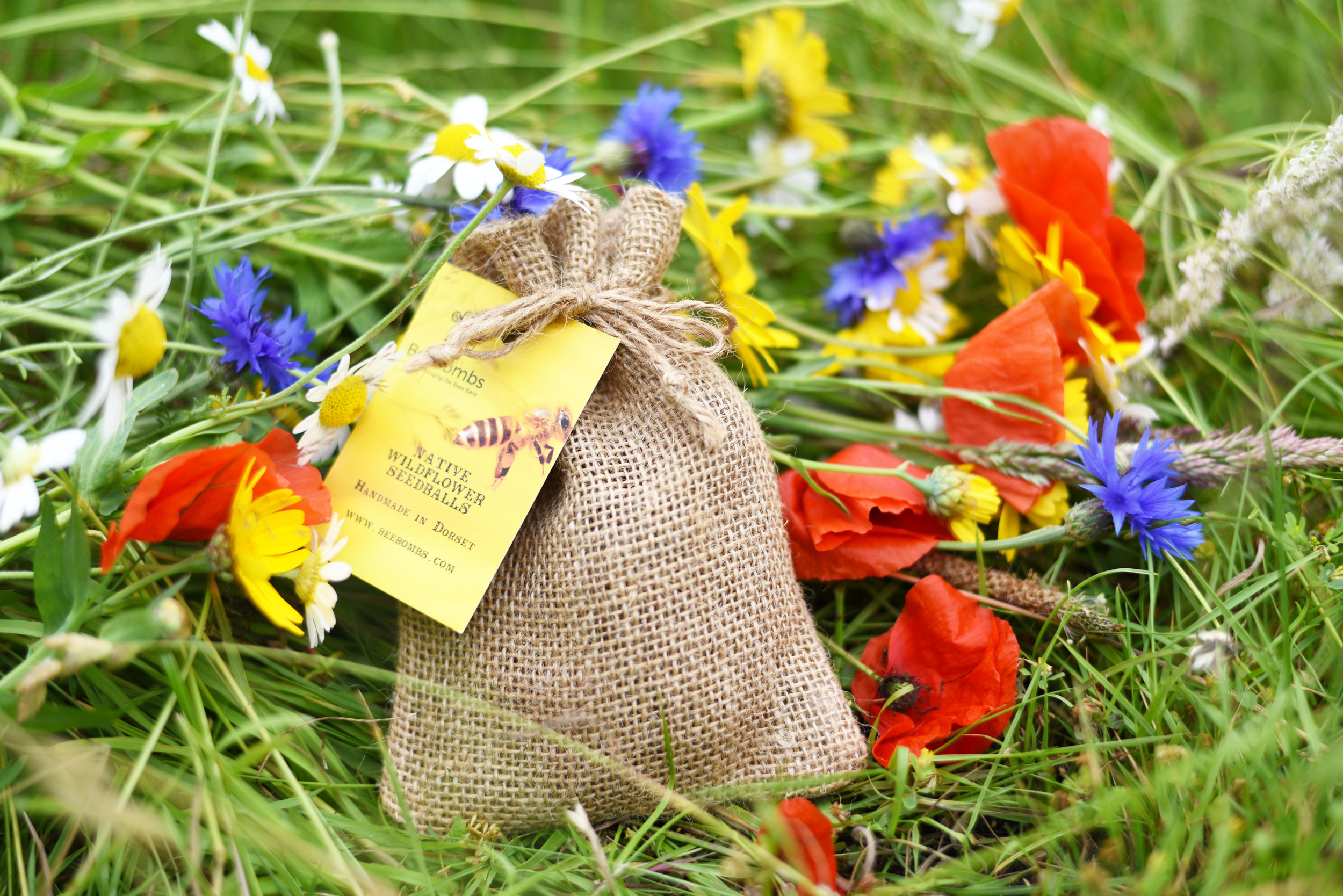 Perfect year round gifts. Native Wildflower Seedballs to help #bringthebeesback