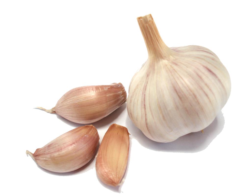 Dupi Frut Albanian Garlic