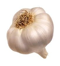 We produce around 450 tons of Garlic head of average calibration 5.5 cm. Brushed and cleaned with the best technology available today.