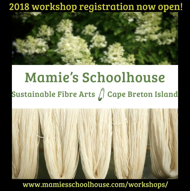 Mamie's Schoolhouse Launch 2018.jpg
