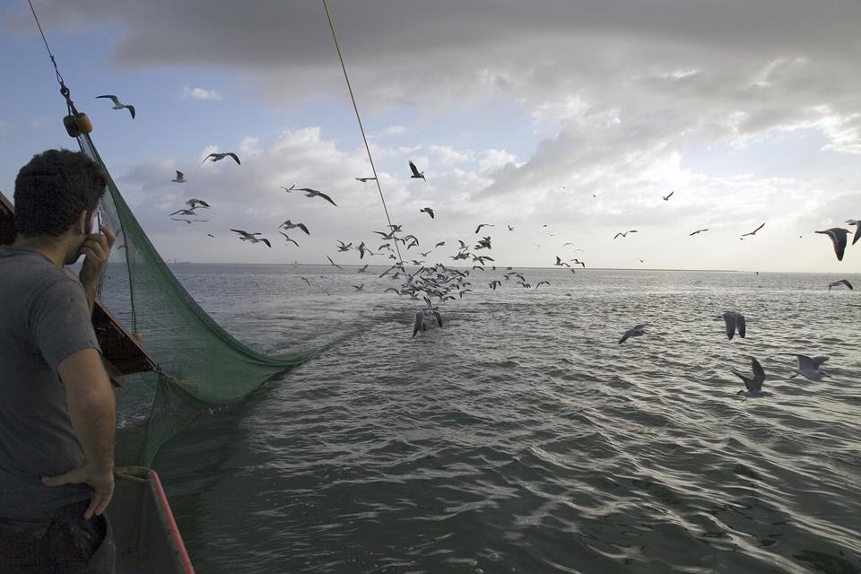 Image 4_Shrimp Boat Projects.jpg