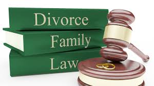 About the SBCBA Family Law Section...    Section Chairs:  Joyce Holcomb   Meeting schedule:  3rd Wednesday of each month, 12 noon to 1:30p   Location:  San Bernardino County Historic Courthouse, Dept. S-55   Cost:  Free to SBCBA members and Court Staff, $10 to all others.   Brown-Bag: Bring your own lunch. (Please keep your area clean!)
