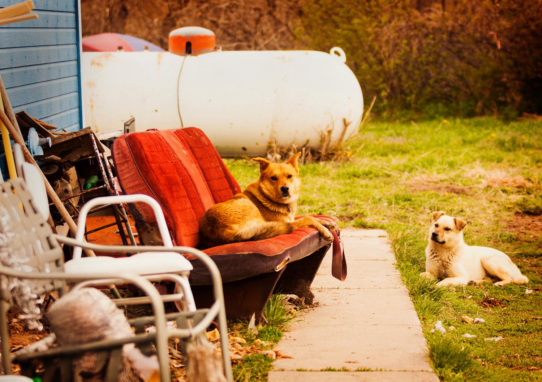 """Rez Buds"" May 7th, 2014 Porcupine, SD"
