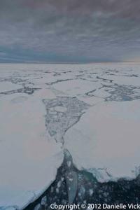 2012DV-Arctic-.jpg