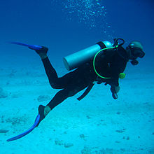 scuba diving .jpg