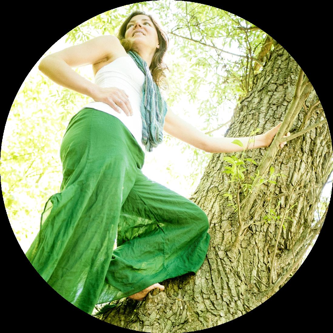 laura circle tree.png