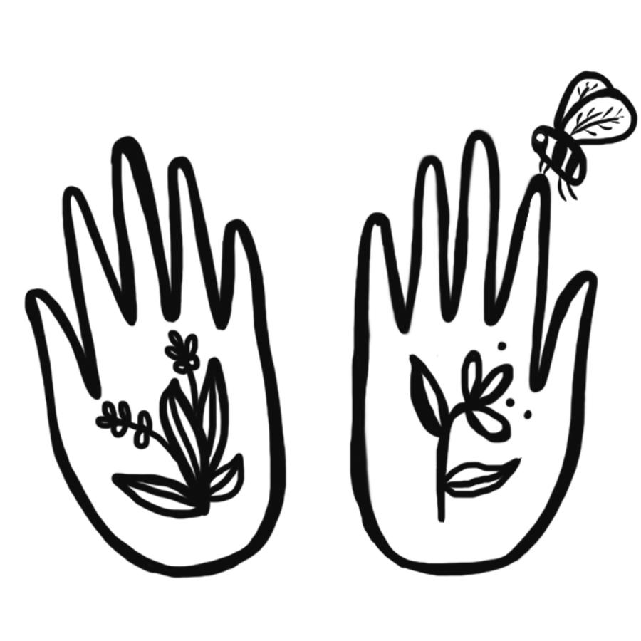 hands with bee.jpg