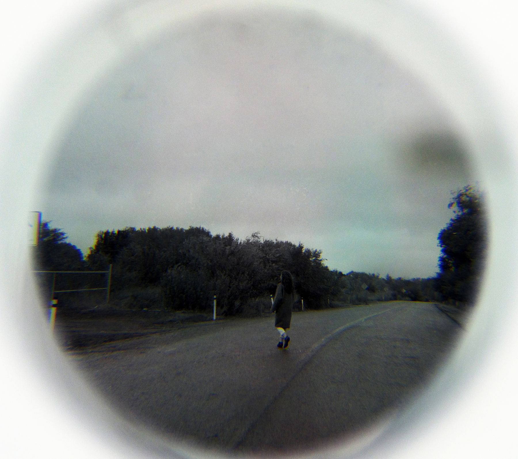 LookingGlass-notlookingback.jpeg