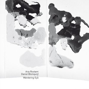 Aria Rostami and Daniel Blomquist  Wandering Eye - Glacial Movements (2016)   Photo by Bjarne Riesto    Album Design by Machinefabriek