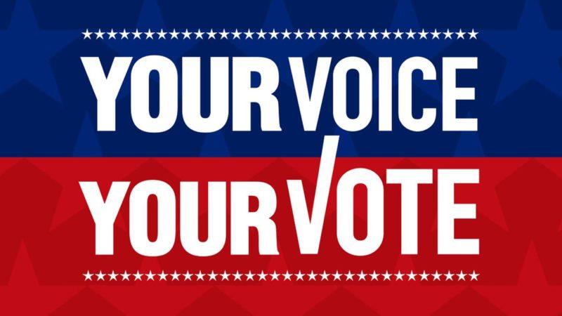 vote badge.jpg