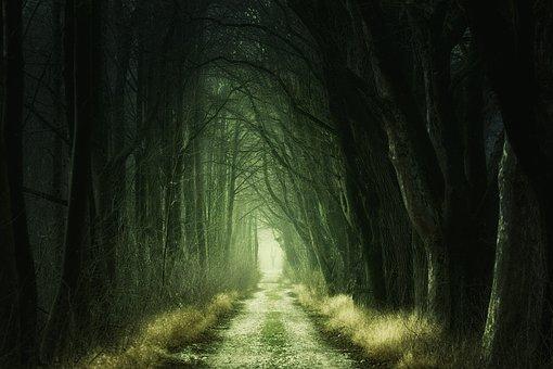 Darkness 3.jpg