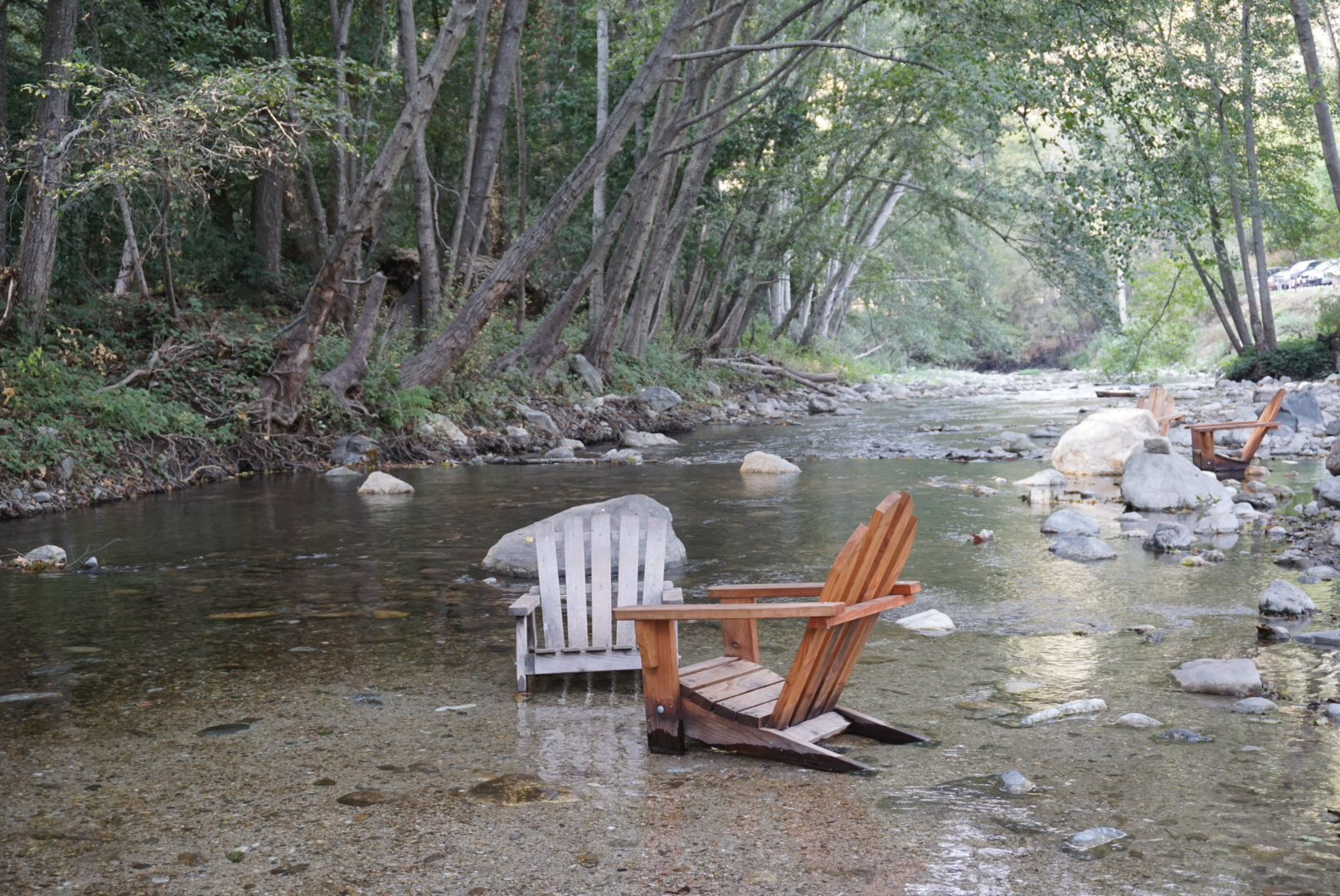 Relaxing in the creek at River Inn.