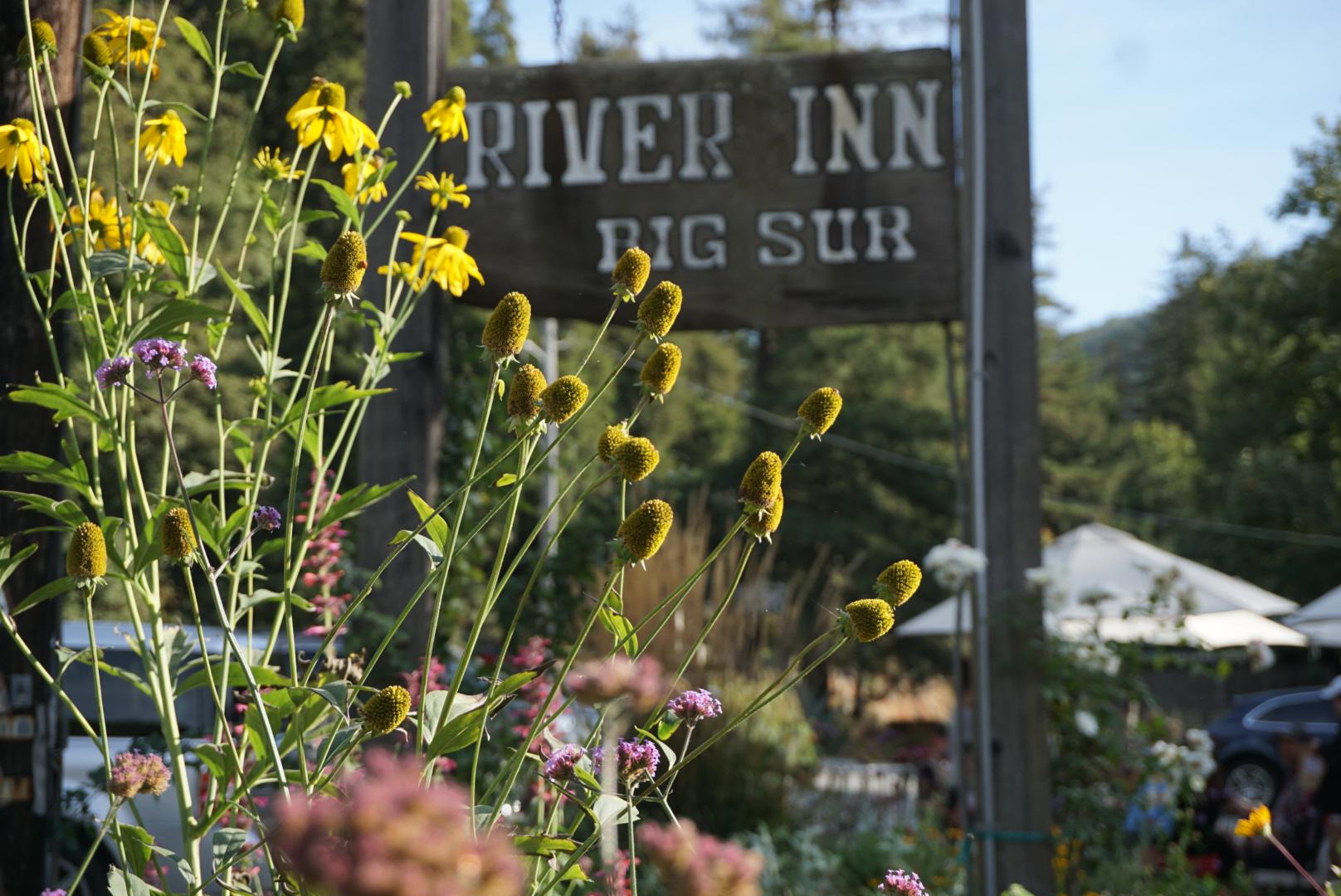 The gardens at River Inn were gorgeous.