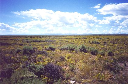 1. Made about nine miles SW of Fort Bridger, WY, 8/23/97. Beauty on Wyoming's High Plains.     Photograph by Steve Berlin.  There is a spare beauty to the Wyoming landscape along this part of the trail as can be appreciated in this view from Bigelow Bench, south toward the Uintah Mountains in Utah.