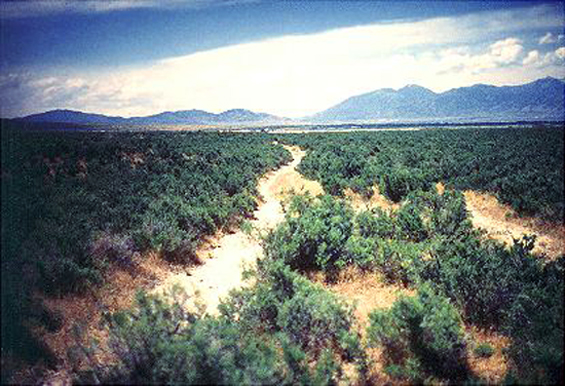 """1.Made 1995 Near Grantsville, Utah.   Looking SE towards Hastings or Twenty Wells.    Photograph: Copyright © 1995 Roy D. Tea.   This is a view of the Hastings Trail looking southeast toward Grantsville, Utah, about 45 miles west of Salt Lake City. Grantsville was known in the trails era before Mormon settlement as Twenty Wells or Hastings Wells. This portion of the trail was located by OCTA members in 1995. On the right are the Stansbury Mountains, crossed by the Bryant-Russell pack train led by Hudspeth and on the trail a little ahead of the Donner Party in 1846. Travelers on the Hastings spent as much time as they could here to """"recruit"""" their cattle on the plentiful grass and water available as they prepared for the desert ahead. Preparations often took one, two or even more days."""