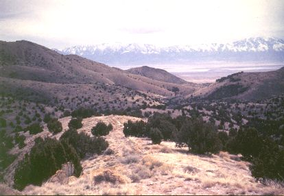 6. Made 1995, Hastings Pass Cedar Mountains, Skull Valley, UT.  Photograph: Copyright © 1995 Roy D. Tea.   This is the view southeast from Hastings Pass in the Cedar Mountains which furnish the western margin of Skull Valley. Across the valley is the Stansbury Range with Deseret Peak on the right. The trail is along a hogback ridge and can be seen in the lower center of the photograph.  Lansford W. Hastings first traveled the road that bears his name in the summer of 1846 and was eastbound. There is some controversy about whether he crossed the Cedar Mountains on that trip at this place or a few miles south. Stansbury, in the area in 1849, thought it was the latter.