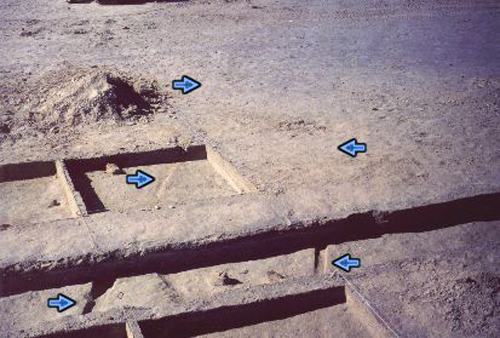 22. Made 11/5/86, Great Salt Lake Desert, Utah.Sharp, 140 Year-Old Wagon Ruts.  Photograph: Copyright © 1986 Roy D. Tea.   Archeological excavation of another wagon mound by the Silver Island Expedition. Notice wheel tracks in the mud below the surface and subtle indications of wheel tracks on the surface. It is presumed that in this area the wagon wheels cut through the crust into the softer material below, making hard pulling for the draft animals and leaving deep ruts that filled in over time with the distinct, light-colored gypsum sand the desert winds blow across this flat.