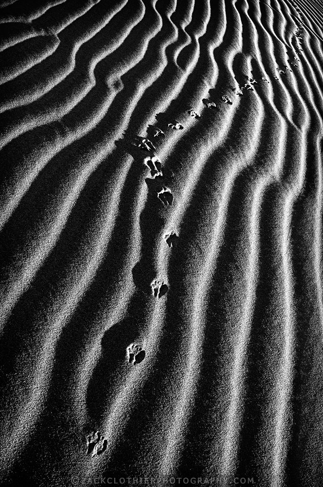 """FOOTPRINTS IN THE SAND"""