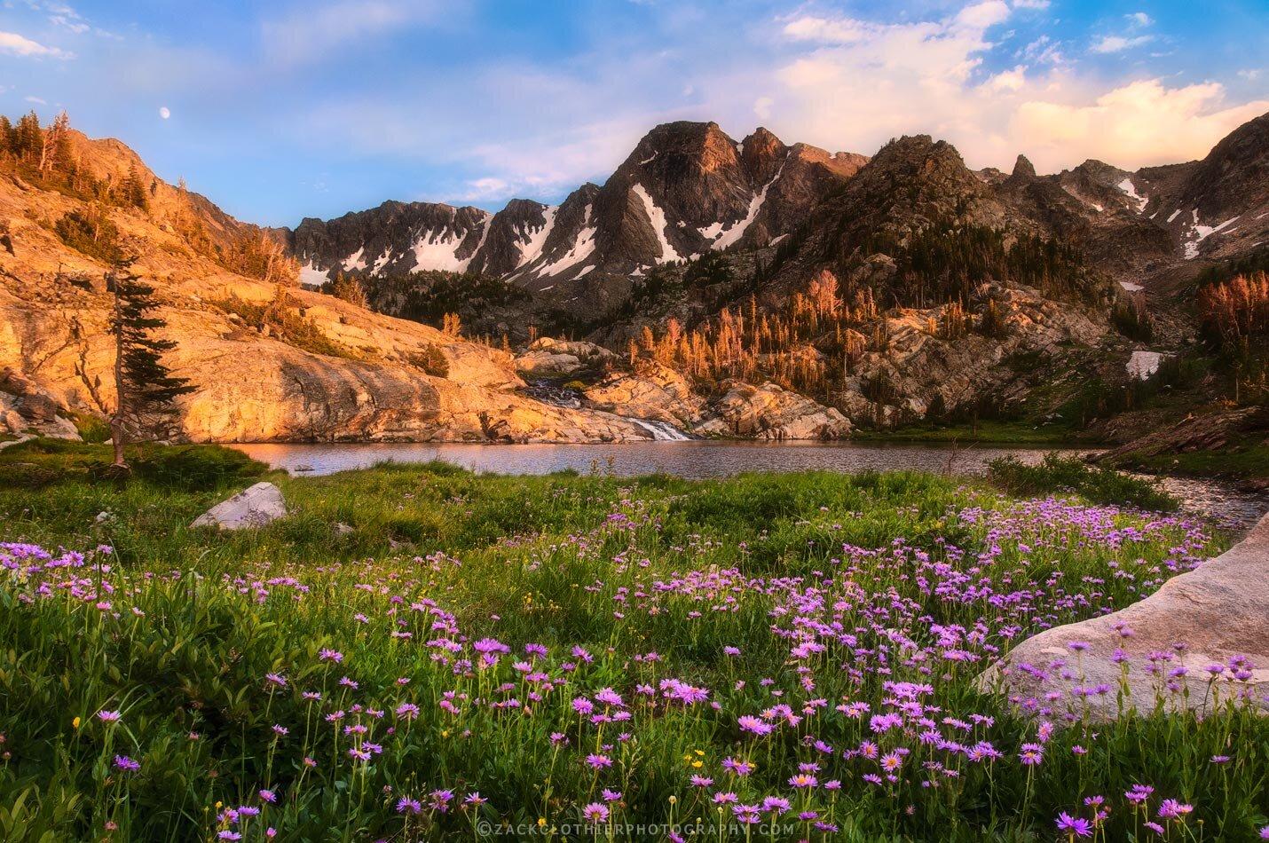 """""""MOUNTAIN PARADISE"""""""