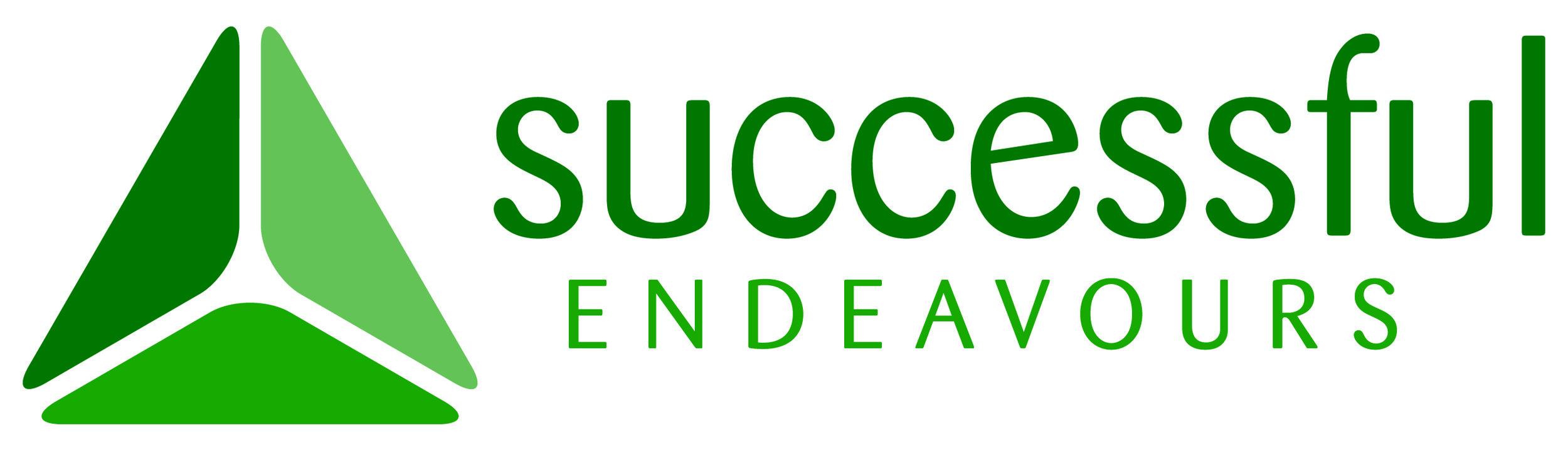 Succesful Endeavours