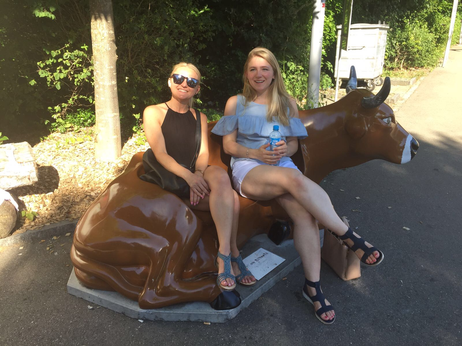 It seemed appropriate to take a break on a cow :)