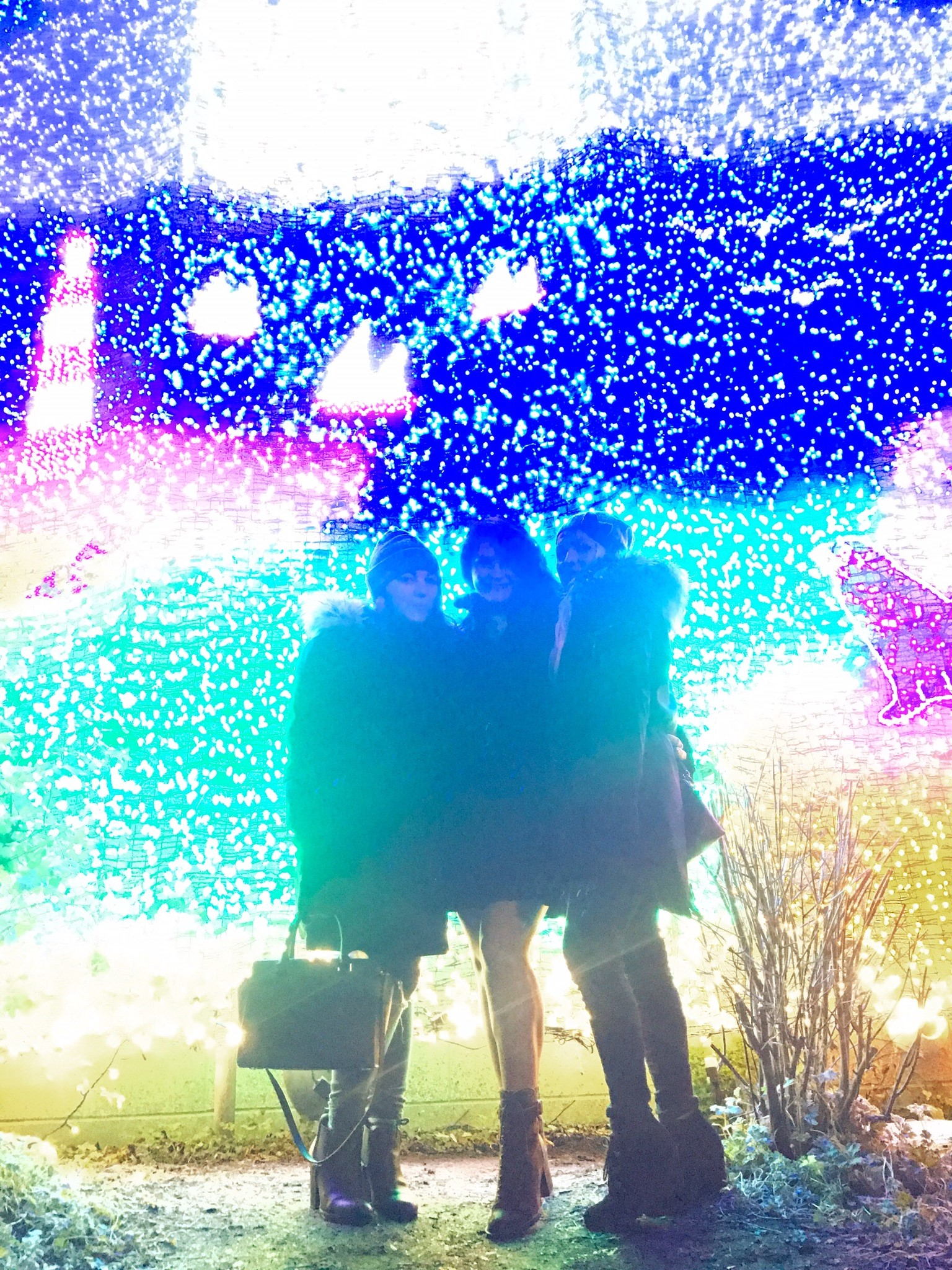 My sister, family friend, and I standing in front of a wall of lights at the Zoo.