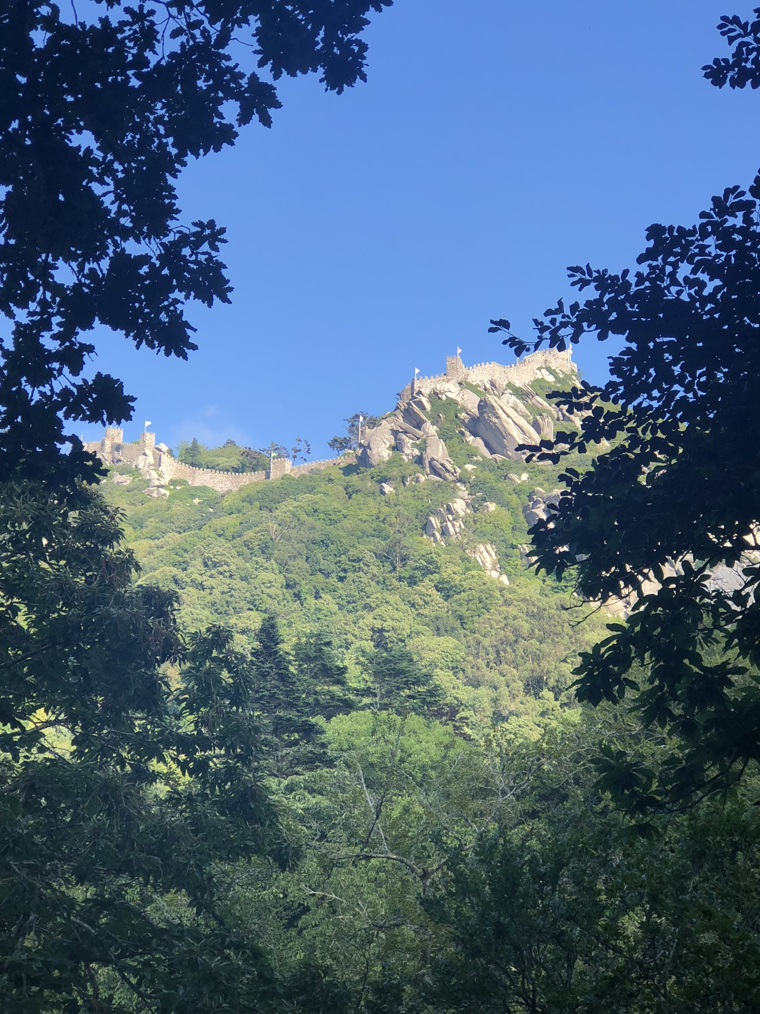 View of Moor's Castle from Quinta da Regaleira