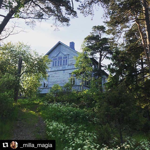 ❤️ @_milla_magia ・・・ Ihanan Sanni Orasmaan upea Luontolaulu -kirja julkistettiin eilen arvoisessaan ympäristössä! Kiitos juhlakansalle ja kiitos @sanniorasmaa @sound_by_nature @luontolaulu ❤️