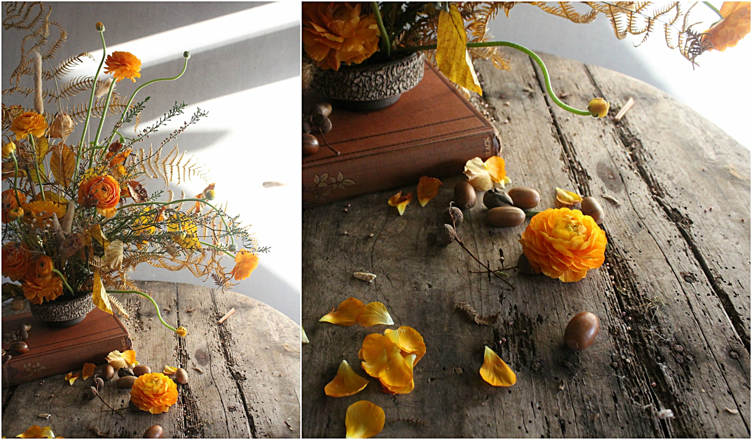 autumn Collage.jpg