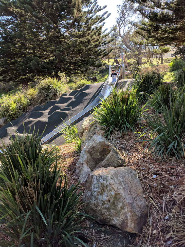 Curved slide down a gully slope with native plants in landscaping