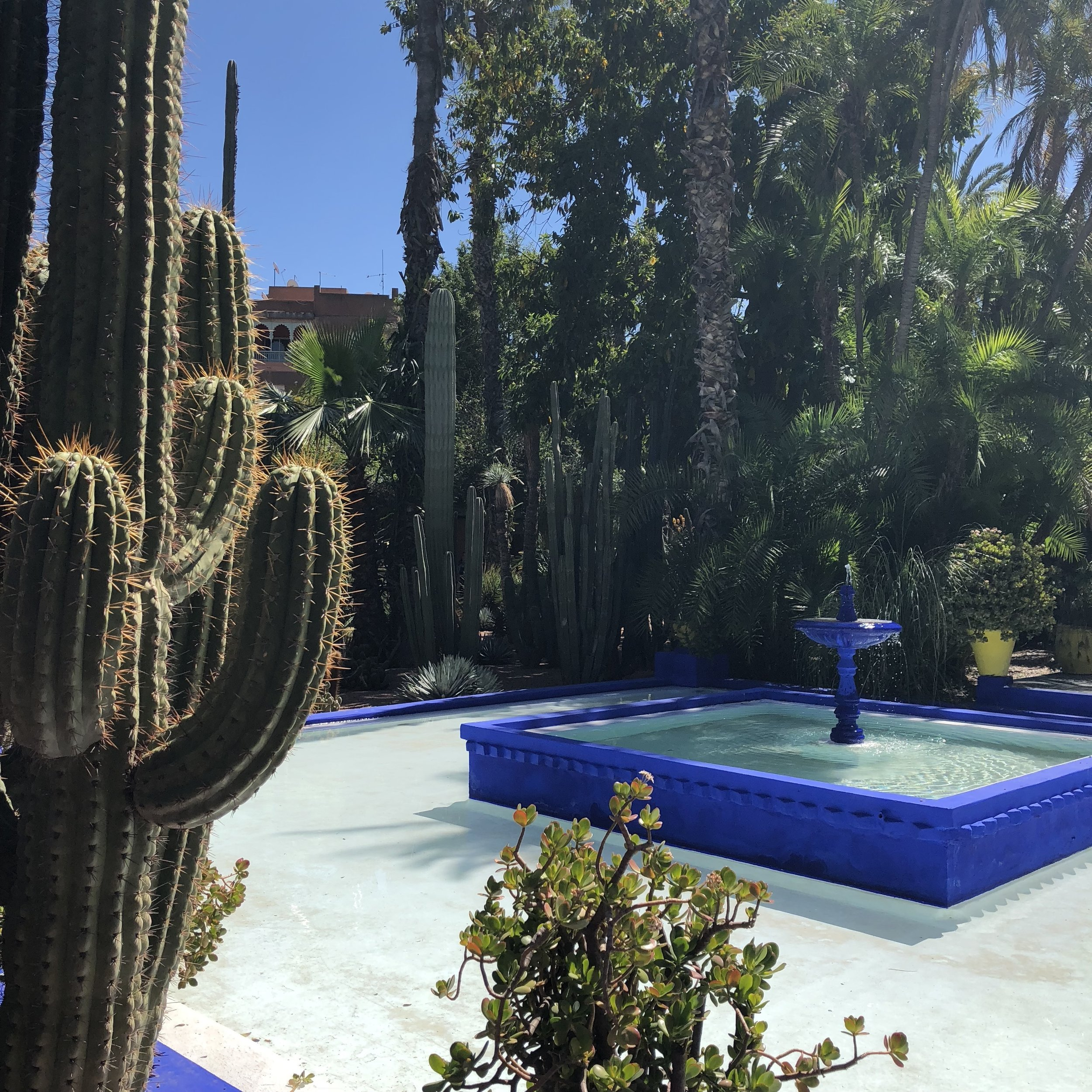 The famous Marjorelle Blue is featured throughout the gardens