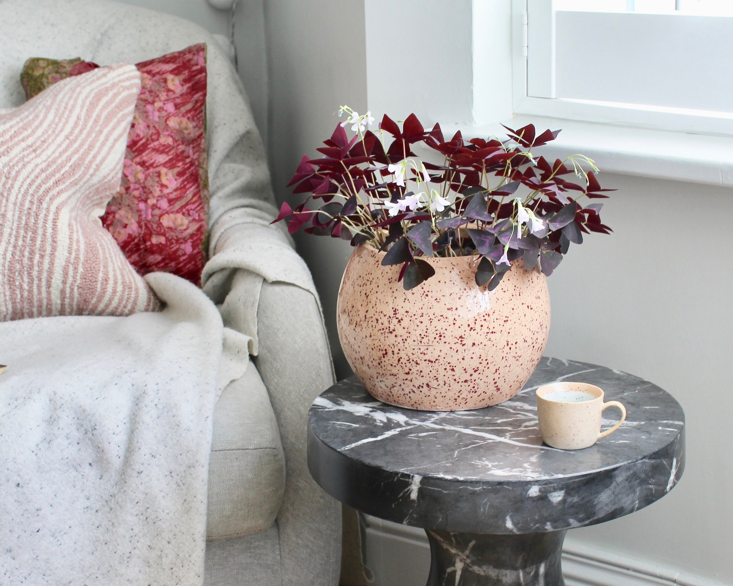 This Oxalis plant inspired the this scheme of dark burgundy and pink - those delicate lilac flowers are just dreamy!