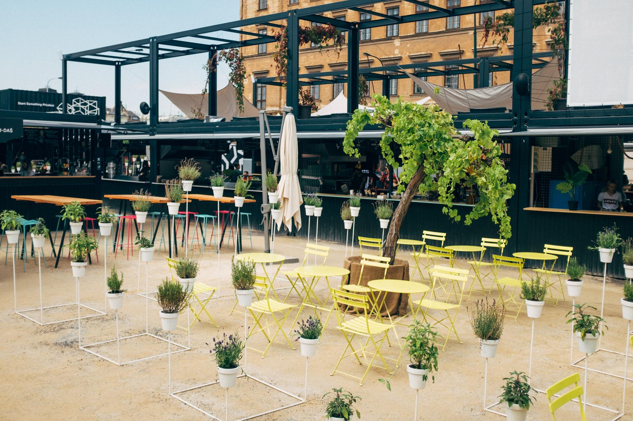 """V Manifestu našla domov """"Victoria pragensis"""", architektonicko-rostlinná instalace, vzniklá ve spolupráci Haenke a Juráše Lasovského"""