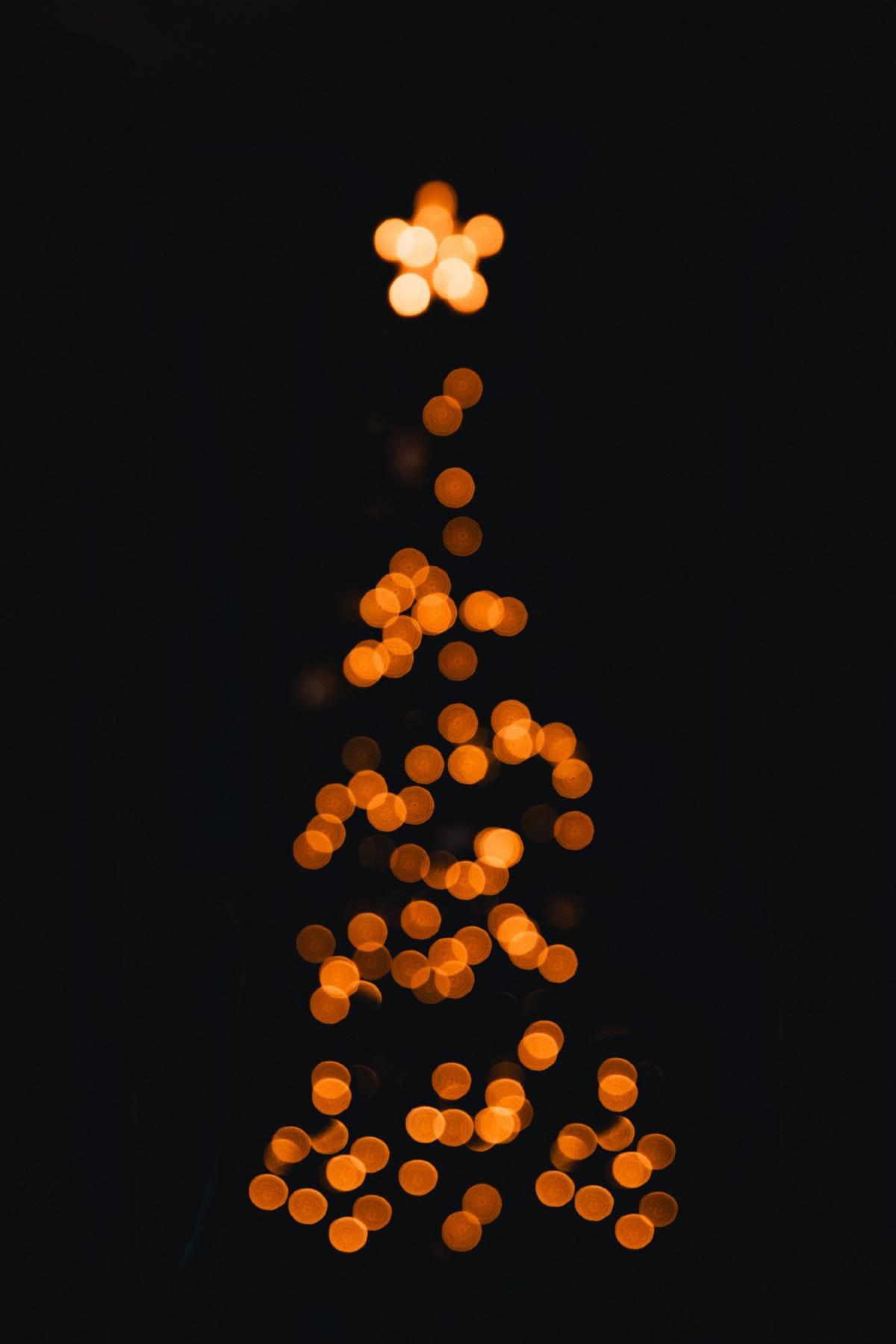 Manifesto-Market-MR-Brut-Christmas-Tree-1.jpg
