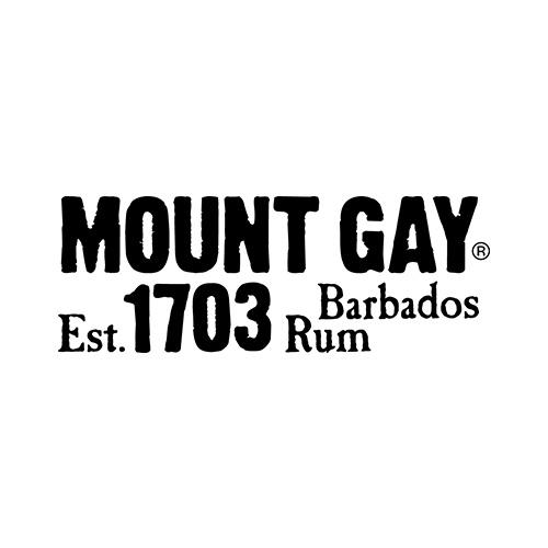 mtgay-logo-web.jpg