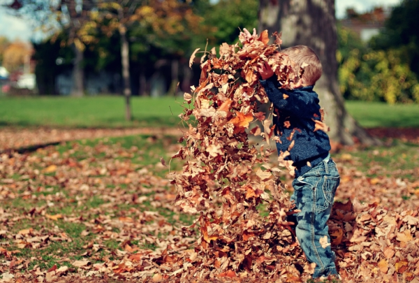 How much do you feel after running through freshly fallen leaves ?