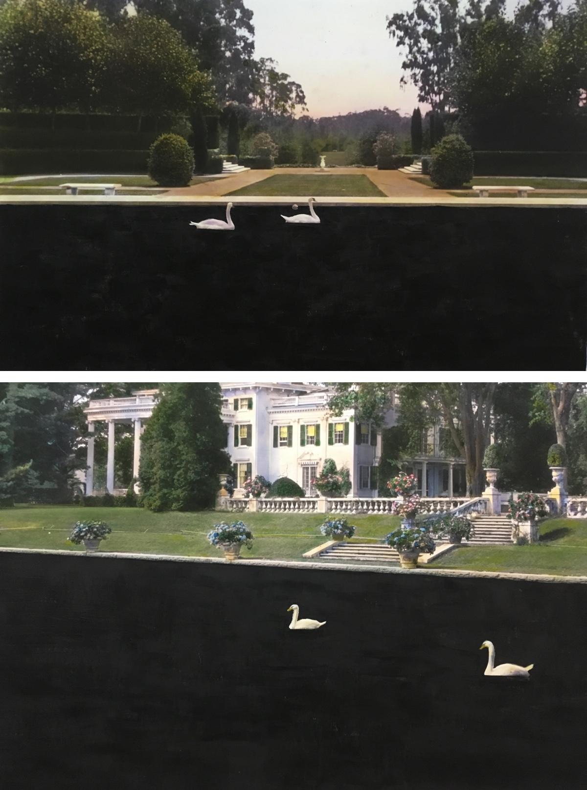 Pair of Swan Pairs.jpg
