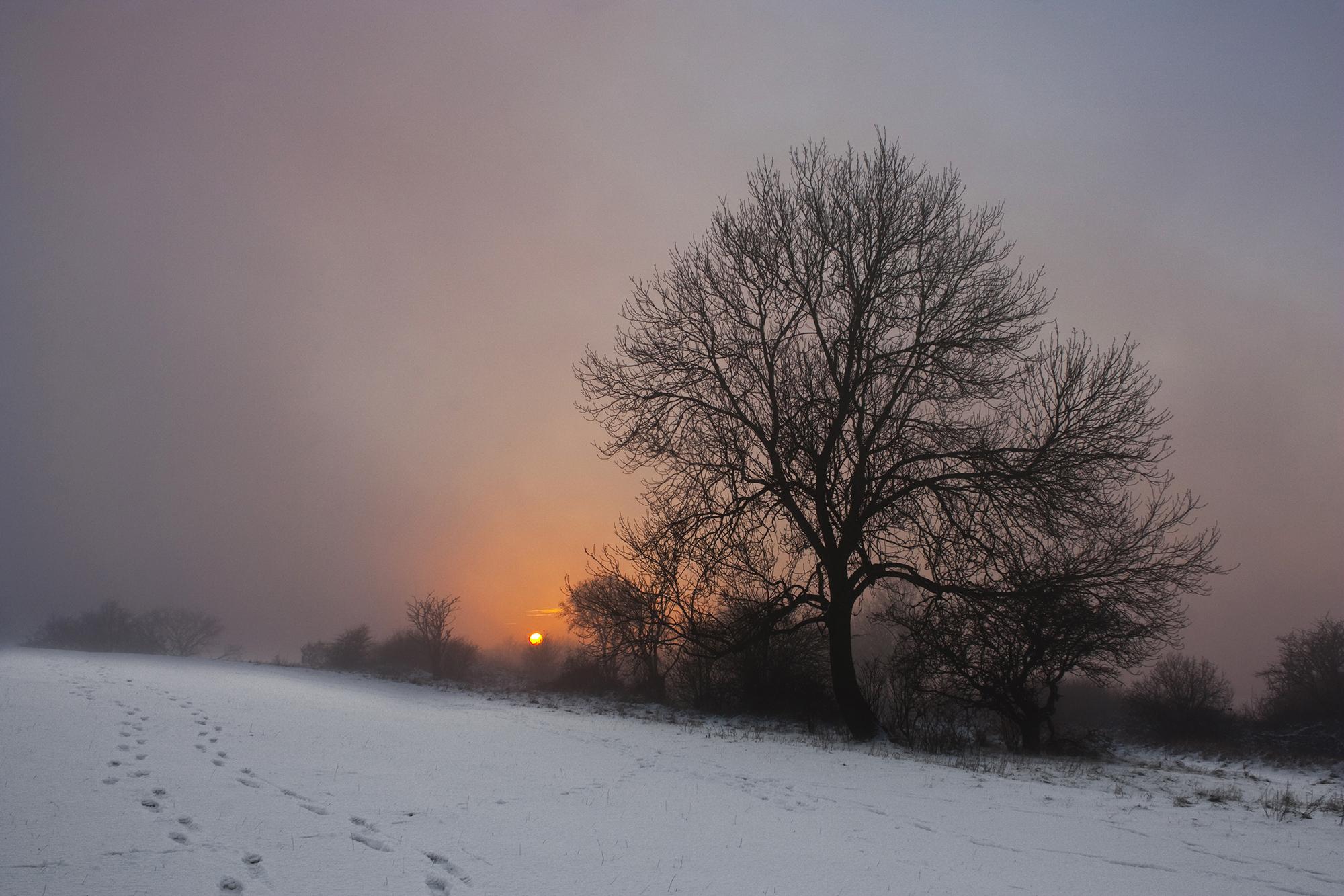 downs winter_2.jpg