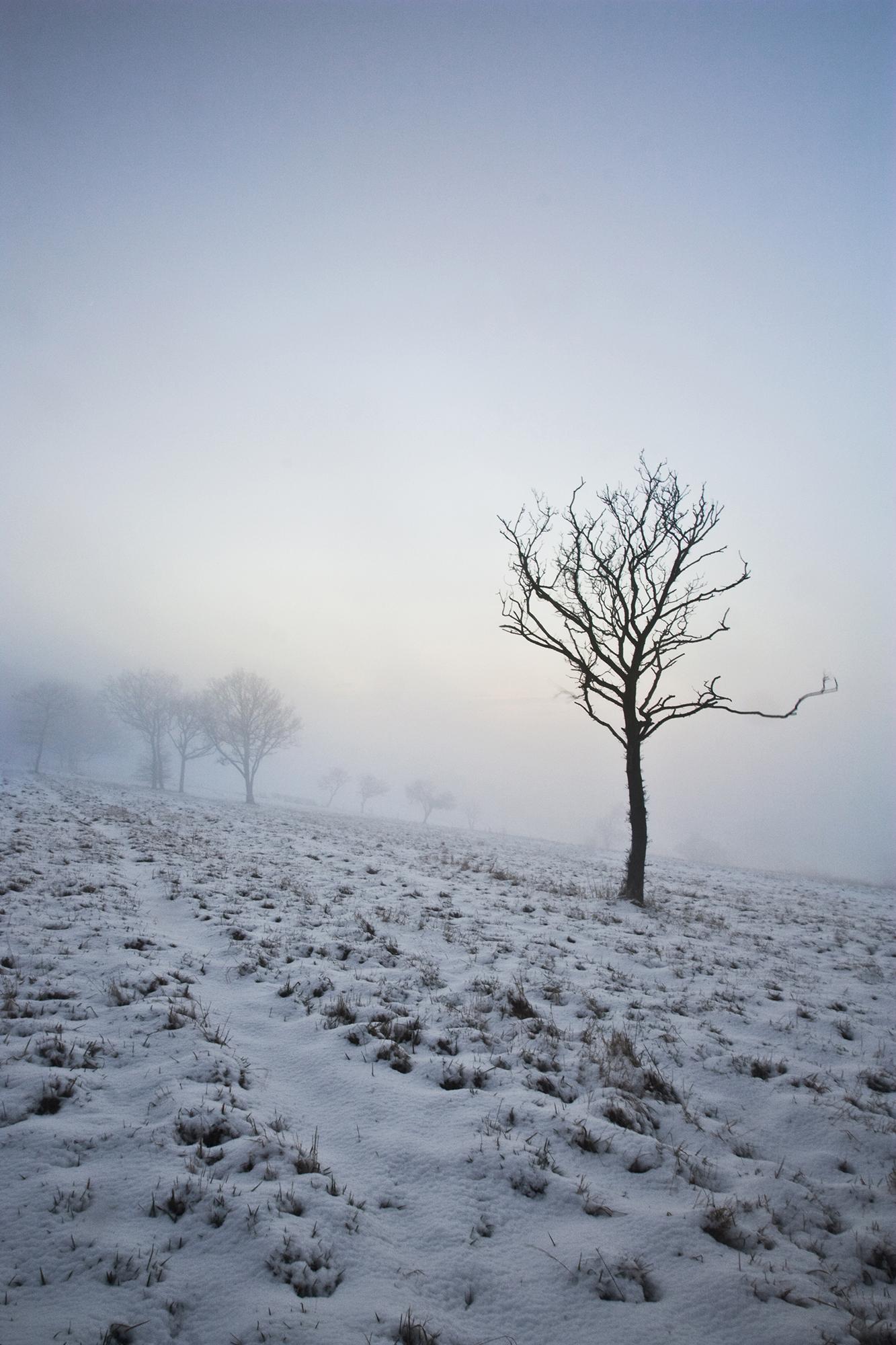 downs winter_3.jpg