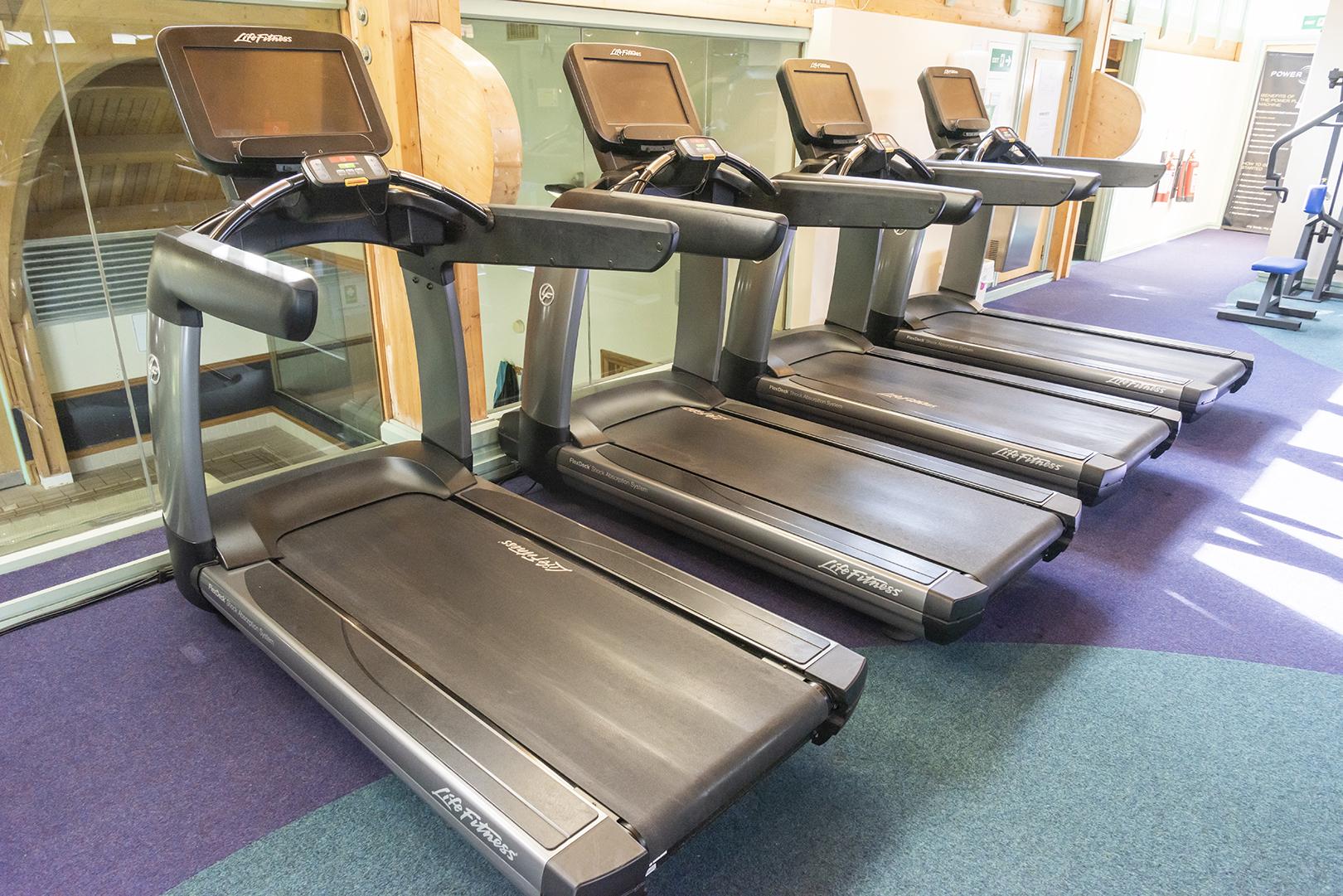 darwin forest gym.jpg
