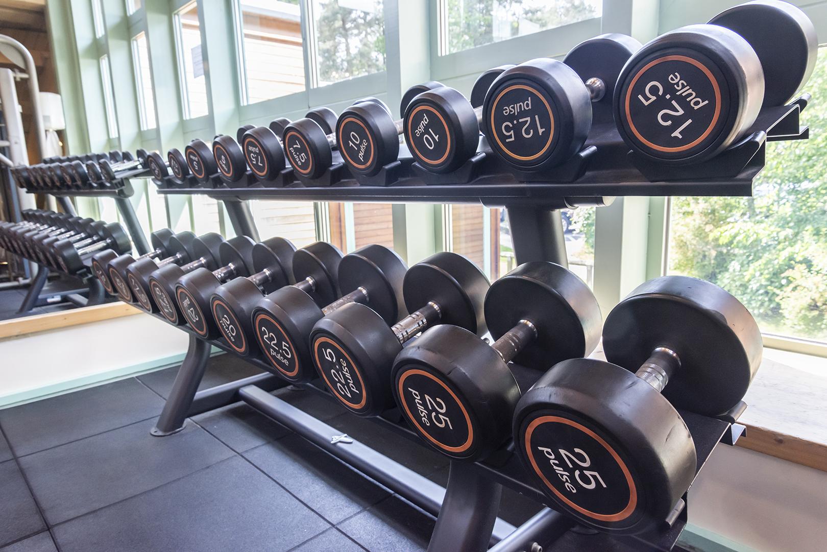 darwin forest weights.jpg