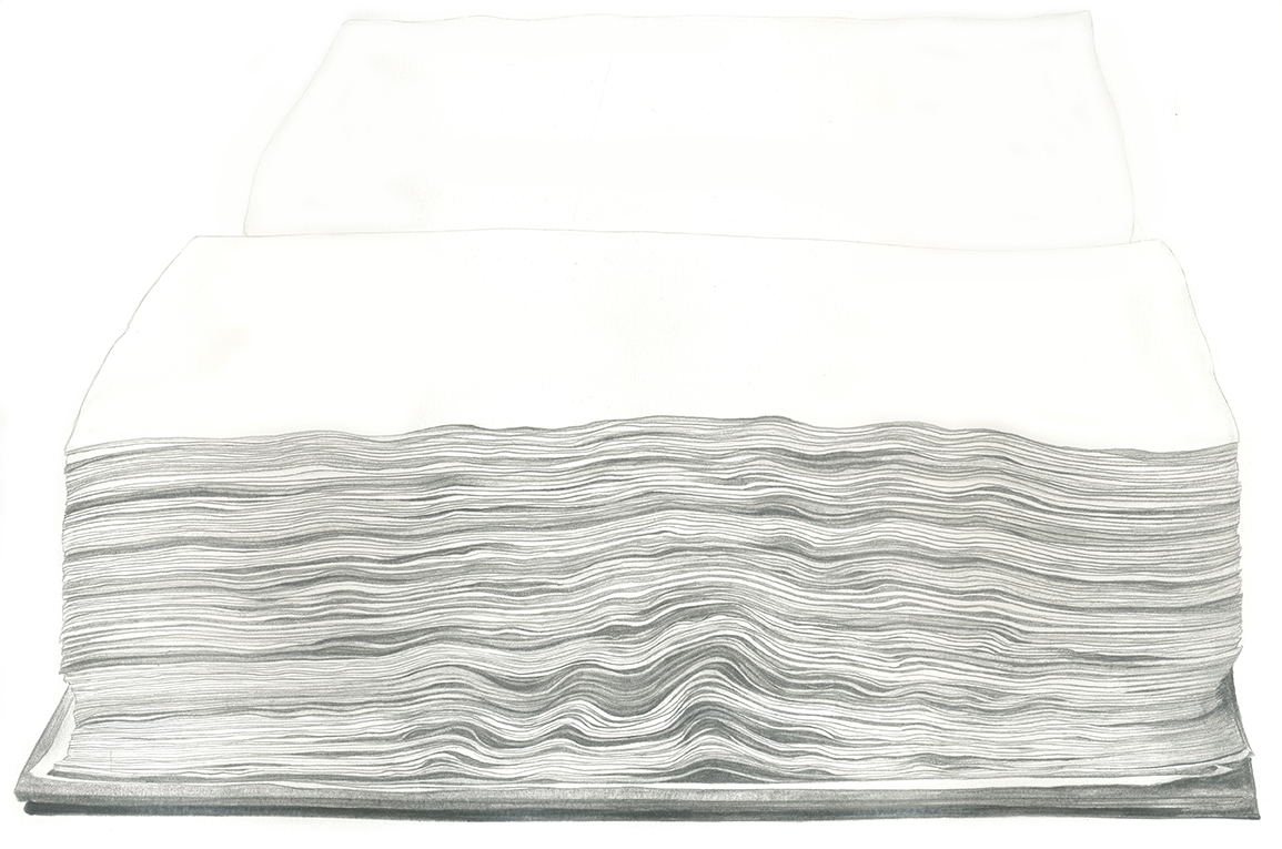 Manuscript , 40 x 57cm, January 2019 (pencil on Norfolk cartridge, 210gsm)