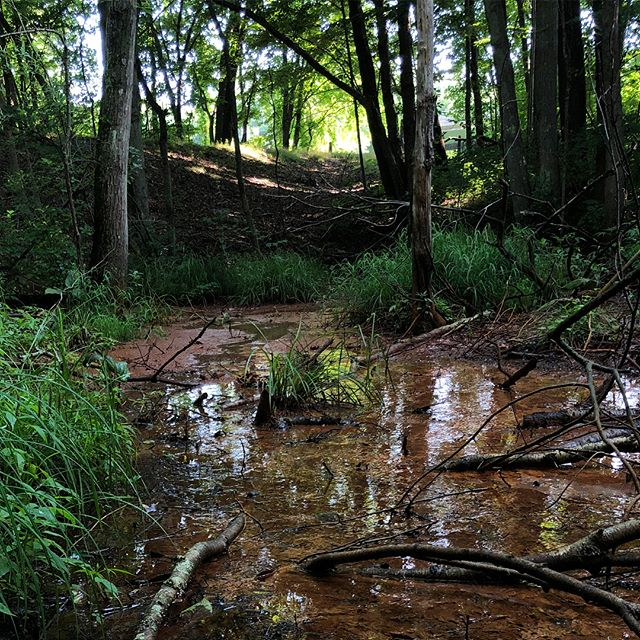 Toxic run-off pools from interstate 295 immediately abut Prov Water's ancient aqueduct, pictured in the top left of frame.  Water from the filtration plant in Scituate runs underground through seven miles of porous cement tunnels, before joining the supply pipes at Budlong Ave in Cranston.  Swipe to see video of what rests just beside our water.