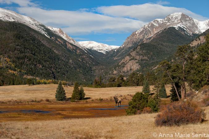Colorado_AMSenita_8718.jpg