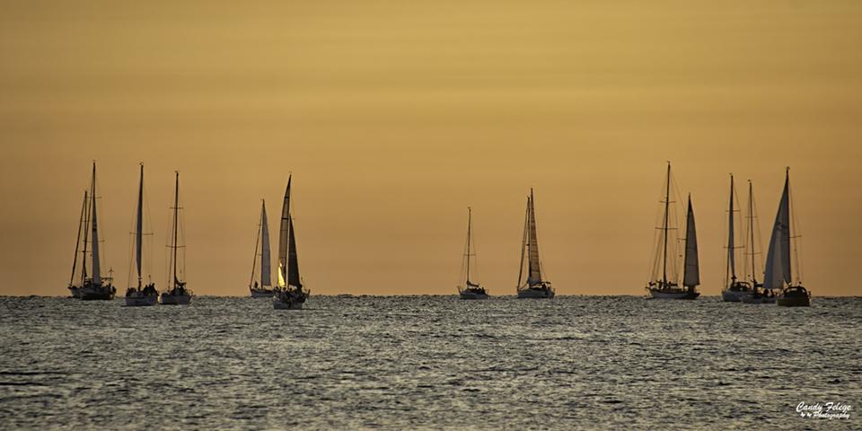 Felege_Sunrise Sailing.jpg